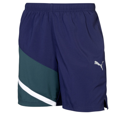 Мужские спортивные шорты Mercedes-Benz Men's Sport Pants, Green/Blue, by PUMA